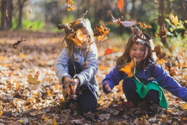 Children Leaves